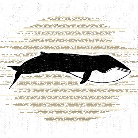 fin: textured icon with fin whale illustration.