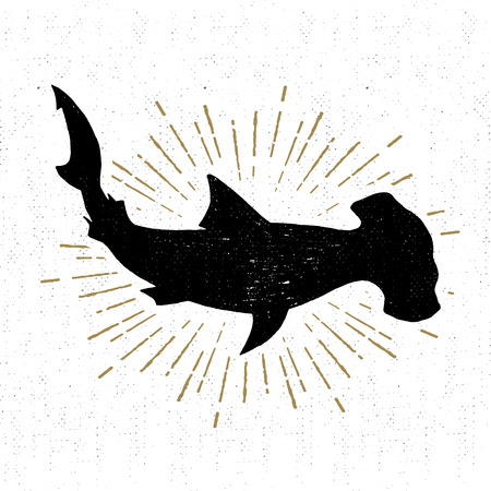 hammerhead: textured icon with hammerhead shark illustration.