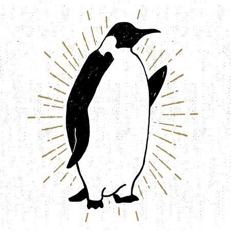 Hand drawn textured icon with emperor penguin vector illustration.