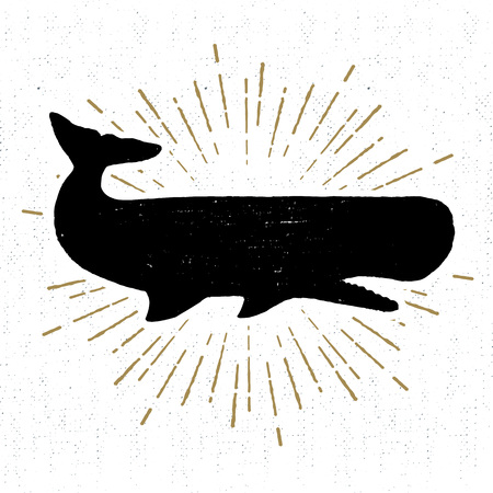 cachalot: Hand drawn vintage icon with a textured sperm whale vector illustration.