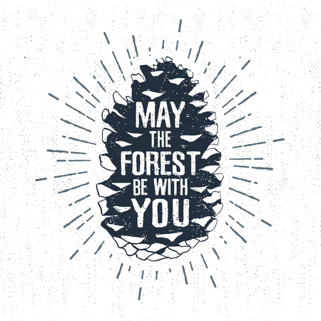 fir cone: Hand drawn label with textured fir cone vector illustration and May the forest be with you lettering.