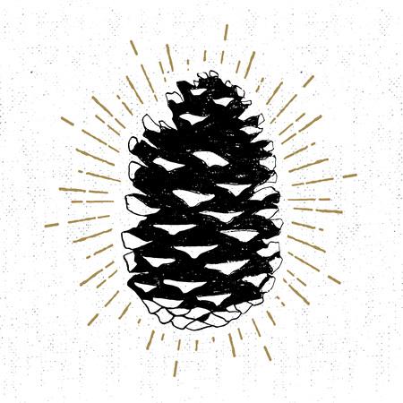 Mano icono dibujado con una ilustración del vector del cono de abeto con textura. Ilustración de vector