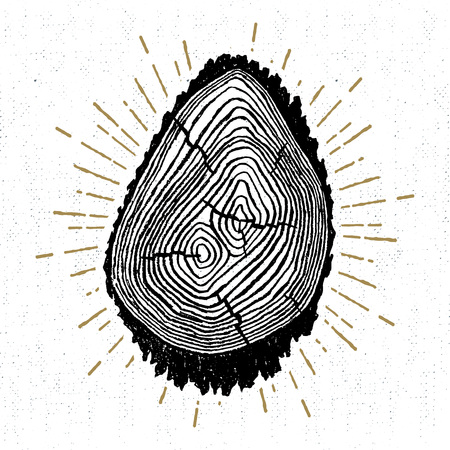 radial cracks: Hand drawn icon with a textured tree trunk vector illustration.