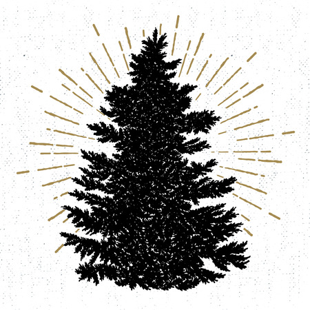 Hand drawn icon with a textured fir tree vector illustration.