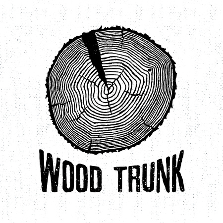 radial cracks: Hand drawn label with textured tree trunk vector illustration and Wood trunk lettering.