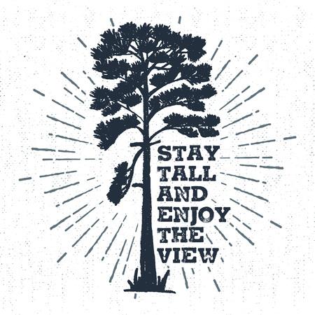 """Mano etiqueta dibujada con la ilustración vectorial de pino textura y """"Stay alto y disfrutar de la vista"""" letras de inspiración."""