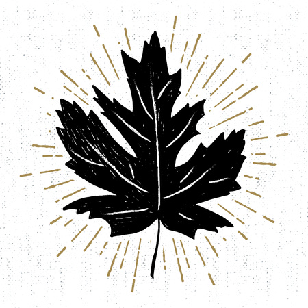 Hand drawn icône avec une texture feuille d'érable illustration vectorielle.