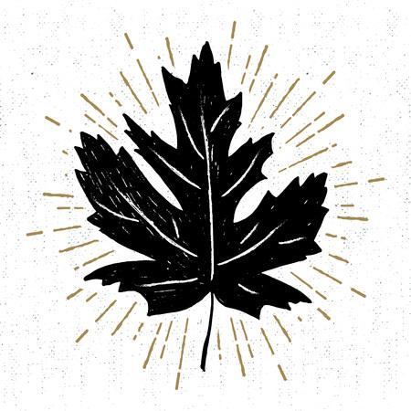 Ręcznie rysowane ikony z teksturą liści klonu ilustracji wektorowych.