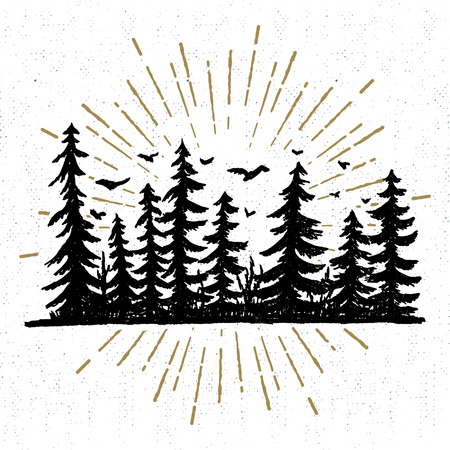 Hand drawn icon with a textured spruce trees vector illustration. Vettoriali