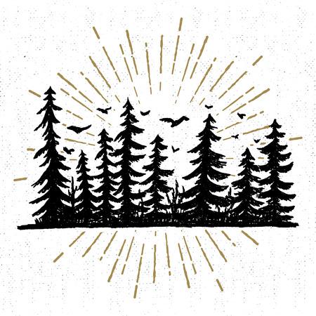 Mano icono dibujado con una ilustración vectorial árboles de abeto con textura. Foto de archivo - 60255329