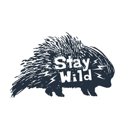 Hand drawn icon with textured porcupine vector illustration and Stay wild inspirational lettering.