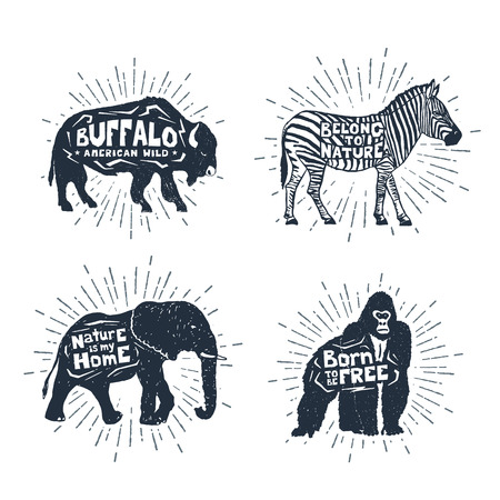 Hand drawn textured vintage badges set with buffalo, zebra, elephant, and gorilla vector illustrations, and inspirational lettering.