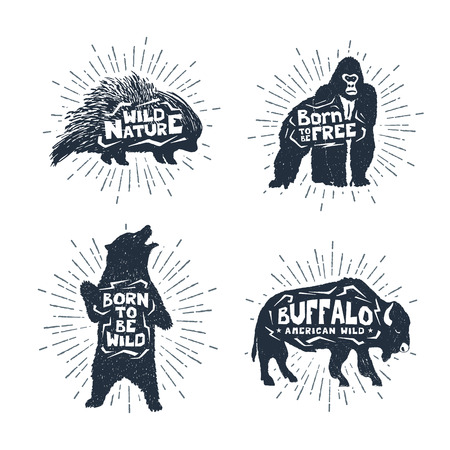 porcupine: Hand drawn textured vintage badges set with porcupine, gorilla, bear, and buffalo vector illustrations, and inspirational lettering.