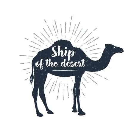 """Hand getrokken label met getextureerde kameel illustratie en """"schip van de woestijn"""" belettering."""