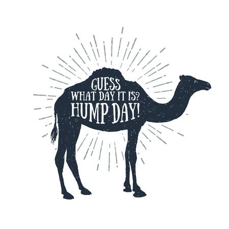 """¡Etiqueta engomada dibujada mano con el ejemplo textured del camello y """"conjetura qué día es día de joroba!"""" Letras divertidas. Vectores"""