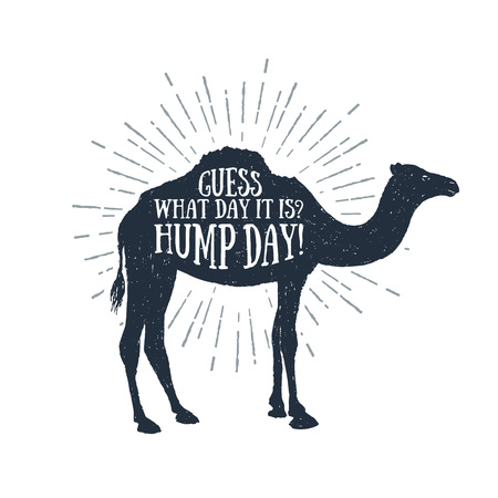 guess: Hand drawn label with textured camel  illustration and Guess what day it is Hump day! funny lettering.