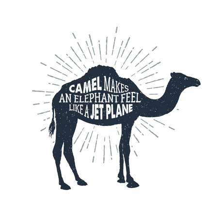 Hand drawn label with textured camel  illustration and Camel makes an elephant feel like a jet plane funny lettering.