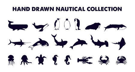 Hand drawn textured nautical fish vector illustrations set.