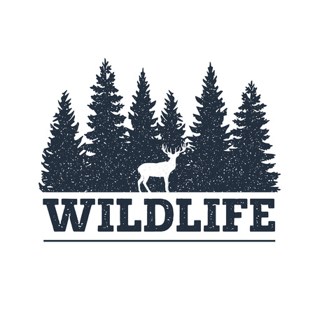 """Ręcznie rysowane inspirująca etykieta z teksturowanymi ilustracjami wektorowymi sosny i jelenia oraz napisem """"Wildlife""""."""