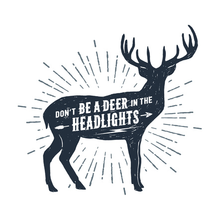 手描き鹿テクスチャ ベクトル イラストと「ヘッドライトに照らされた鹿はいけない」レタリング。
