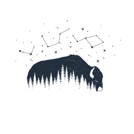 Hand drawn buffalo and constellations textured vector illustrations. 矢量图像