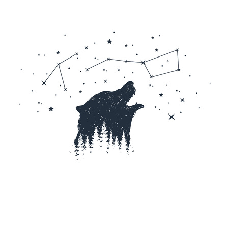 Hand drawn bear and constellations textured vector illustrations.