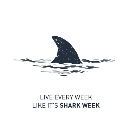 Hand drawn nautical badge with sharks fin textured vector illustration and Live every week like its shark week lettering.