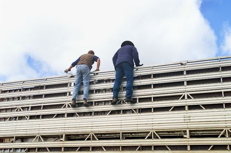 stockman: Two Cowboys standing at top of Cattle transport truck, helping to get the Cattle off the truck