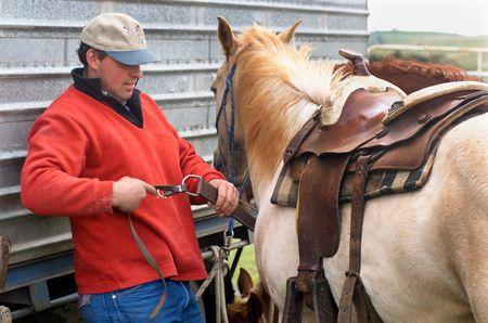 western saddle: Cowboy fitting Western saddle to horse at Rodeo Stock Photo
