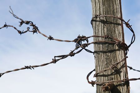 Rusty old Barbed Wire curled around old fence post photo