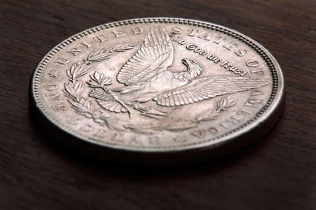Reverse of 1889 USA Morgan Silver Dollar showing Eagle Stock Photo - 3074687