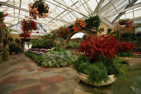 wintergarten: Spektakul�re Farbe floral Anzeige innerhalb Konservatorium am Botanischen Garten