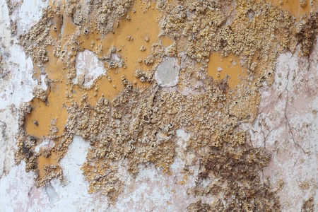 Close up detail of salt damp texture on exterior building wall, also known as rising damp Stock Photo - 9700836