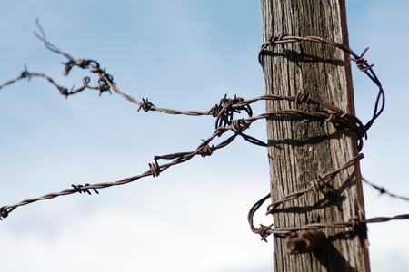 impediment: A view of rusty barbed wire attached to a timber post