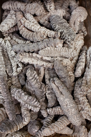 sea cucumber: Dried Sea Cucumber for sale at a market, Chinatown, New York