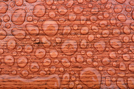 water stained: Water droplets beading after rain on stained timber surface Stock Photo