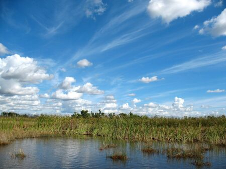 Everglades Florida photo