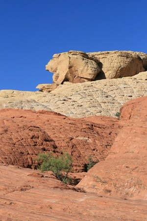 Rocks in Red Rock Canyon Nevada photo