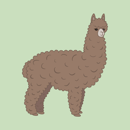 Cute furry brown alpaca. Vector illustration,