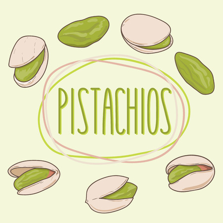 Set of pistachios whole and shelled. Pistachio nuts. Vector hand drawn illustration. Ilustração