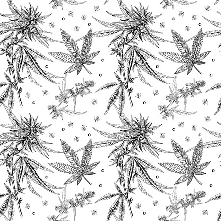 seamless pattern of cannabis plants realistically Vector