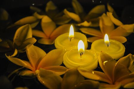 lighted: Floating lighted candles with Plumeria