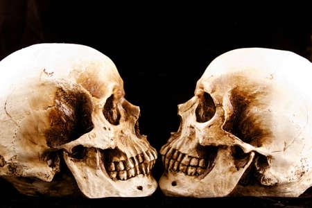 검정색 배경으로 얼굴을 마주보고 두 두개골