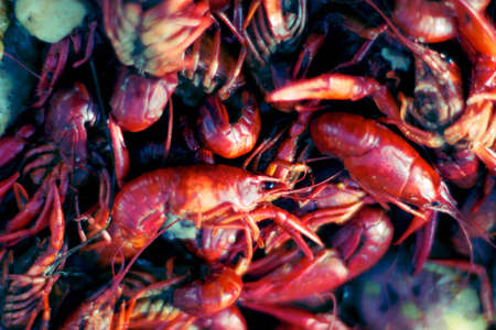 A lot of hot and spicy boiled crawfish ready to be eaten