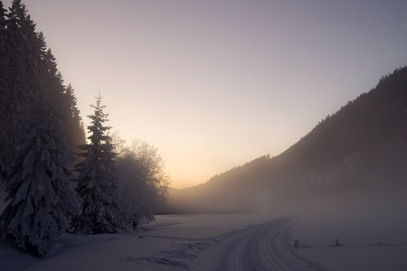 Winter mist landscape photo