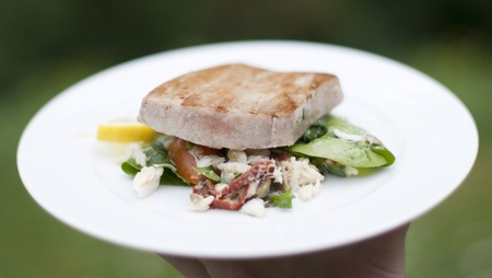 Grilled marinated Ahi tuna salad with crab, baby spinach, dressing from dried tomatoes, Campari and lime