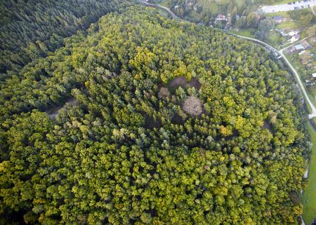 Dense forest aerial view, Brno, Czech Republic Stock Photo