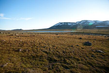 Mountain plateau Valdresflye, Jotunheimen, Norway