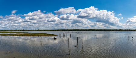 Parc Ornithologique near Bordeaux France a wetlands habitat for bird conservation and bird watching in a panoramic scenic landscape view
