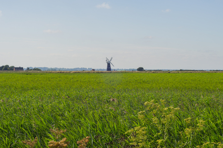 A field of green grass with a windmill on the horizon and a blue sky